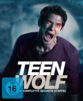 Teen Wolf - Staffel 6 (Softbox)